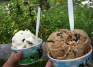 """Ben & Jerry's come from traditional industries and have found a way to do things better."""