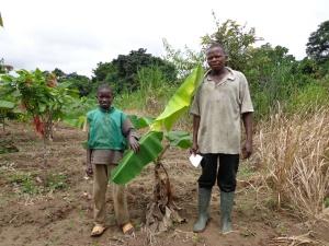 IRAD Cameroon image 2