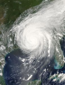 Hurricane Katrina sparked some positive changes.